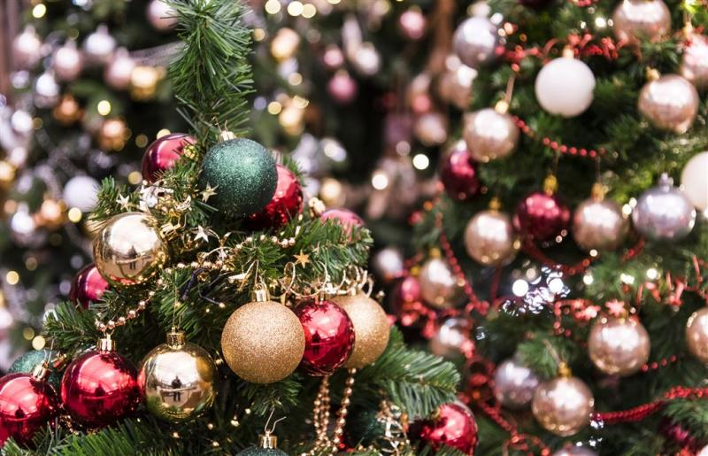 Duitse familie woont thuis in kerstbomenbos