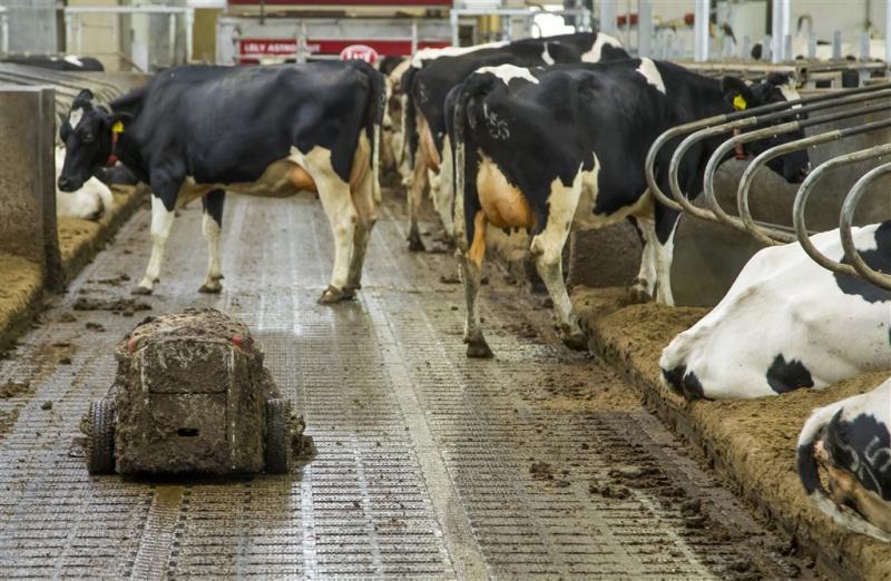 Fosfaatproductie daalt maar blijft te hoog