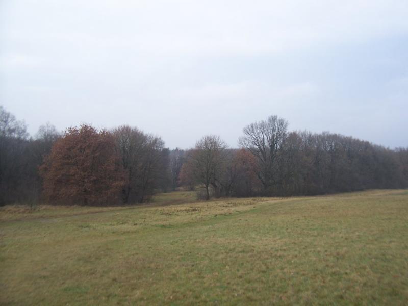 ReichswaldQ (Foto: qltel)