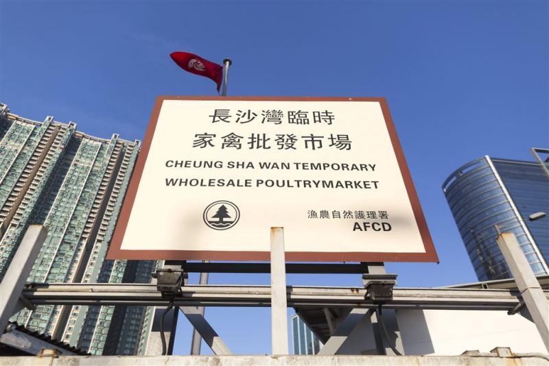 Tweede dode Hong Kong door vogelgriep