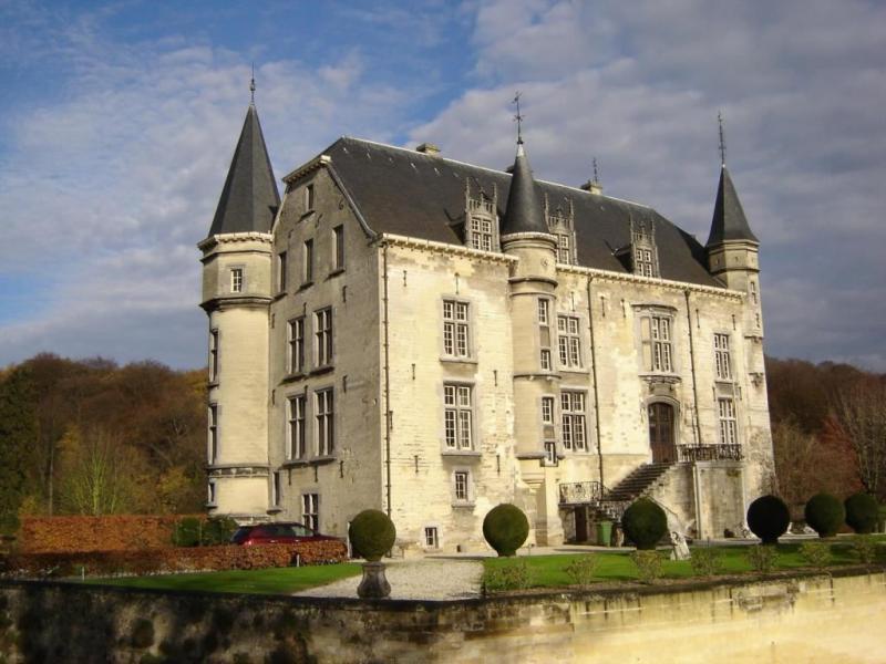 Kasteel de Schaloen (Foto: Funda)