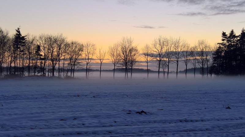 Zonsondergang van zondag 15 januari in de buurt van Tubbergen (Foto: Hummels)