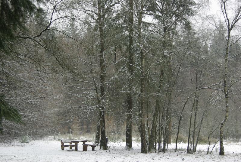 Winter (Foto: Disbatch)