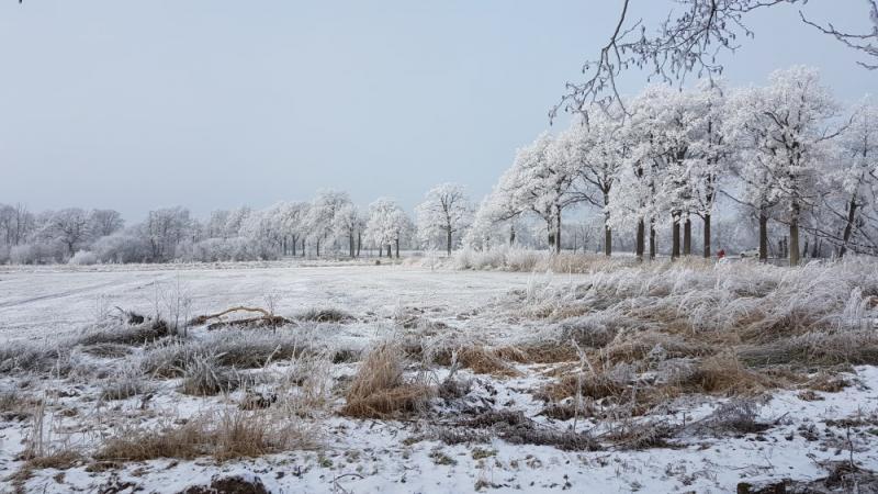Winterfoto's uit heel Nederland!