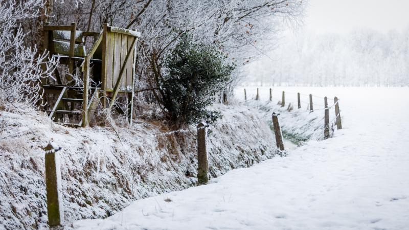 Winterfoto's uit heel Nederland!  (Foto: koelkastje)