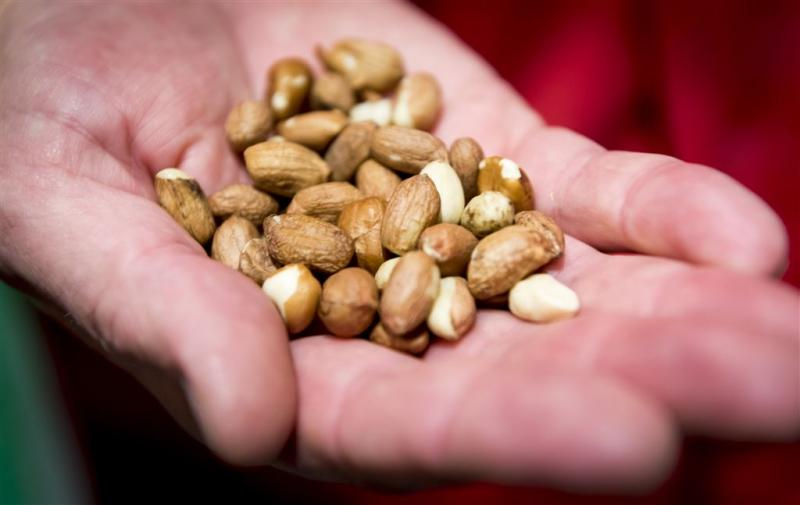 RIVM adviseert duurzamer voedingspatroon