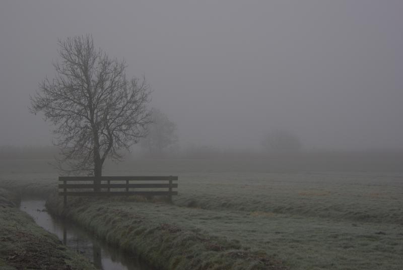 Mist... (Archief-foto Disbatch)