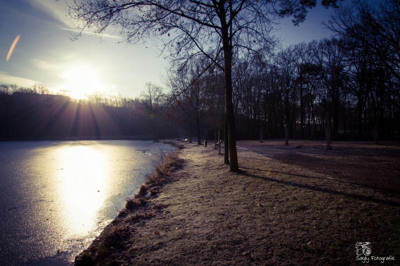 Zon in Limburg (Foto: Luuntje)