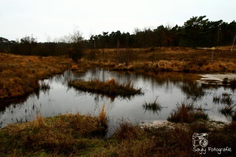 Somber landschap in de buurt van Heerlen (Foto: Luuntje)