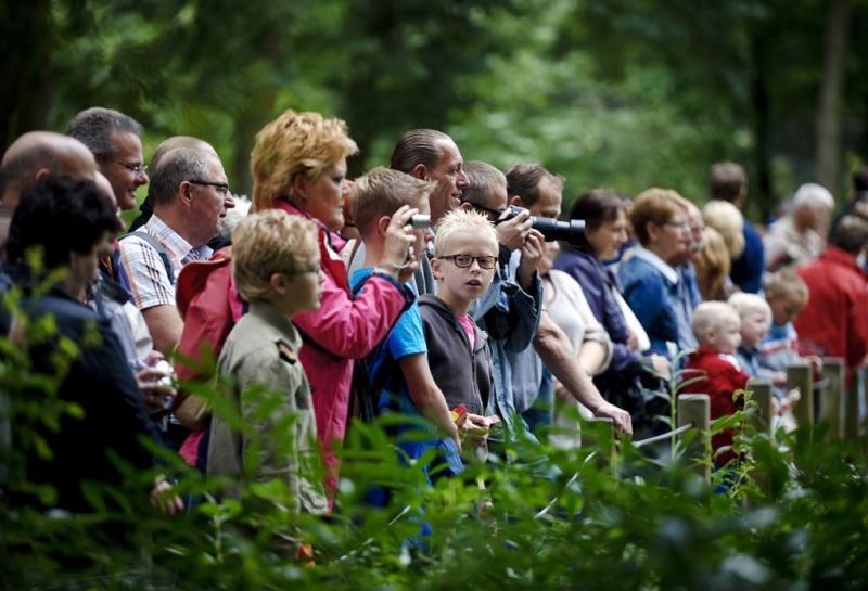 Burgers' Zoo: kom zondag vooral niet