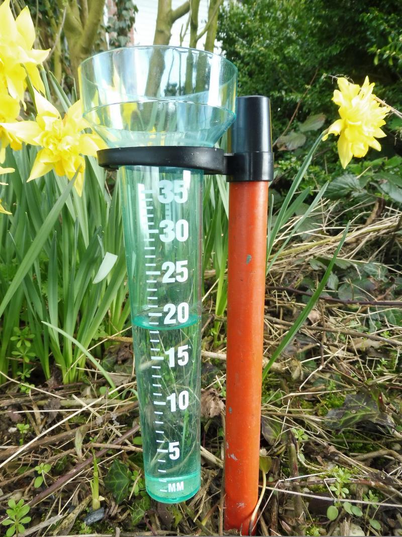 19 mm water in de regenmeter. De opbrengst van 1 week. (Foto: qltel)
