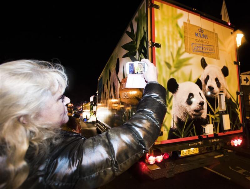 Reuzenpanda's hebben hun nieuwe thuis bereikt