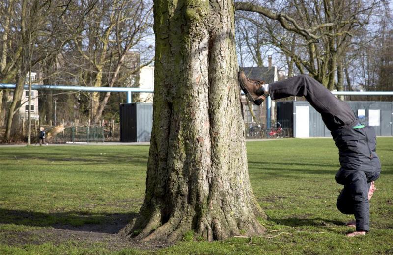 Politie zoekt bomenswaffelaar in Barendrecht