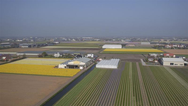 Limburgse boeren: drones tegen wietteelt