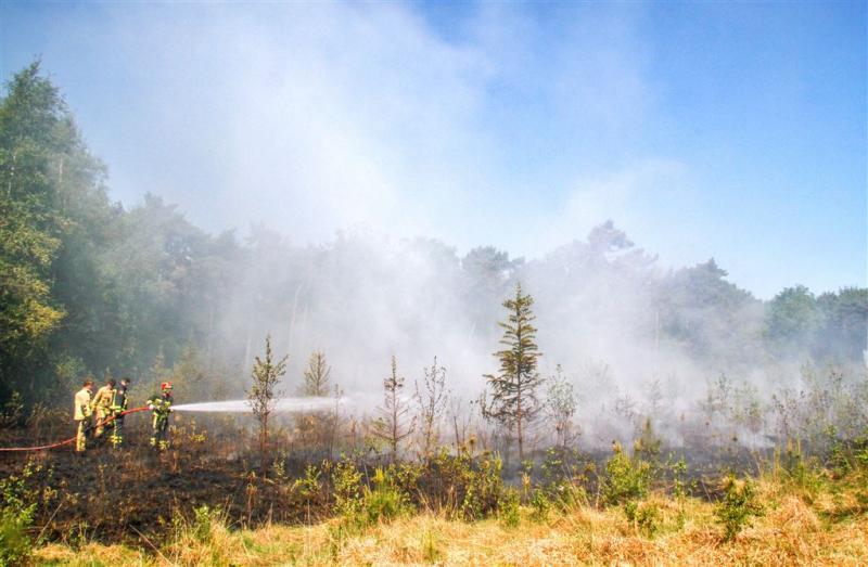 Bosbrand bij camping in Bornerbroek