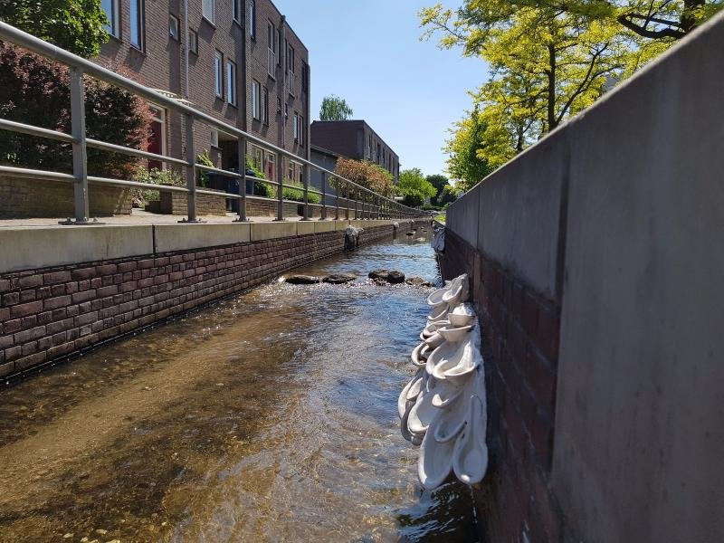 Een spreng in Apeldoorn (Foto: Disbatch)