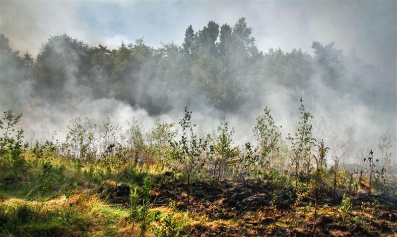 Drie provincies code oranje voor natuurbrand