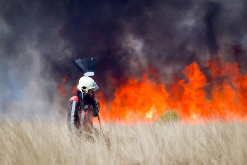 Natuurbrandgevaar: code rood in delen land