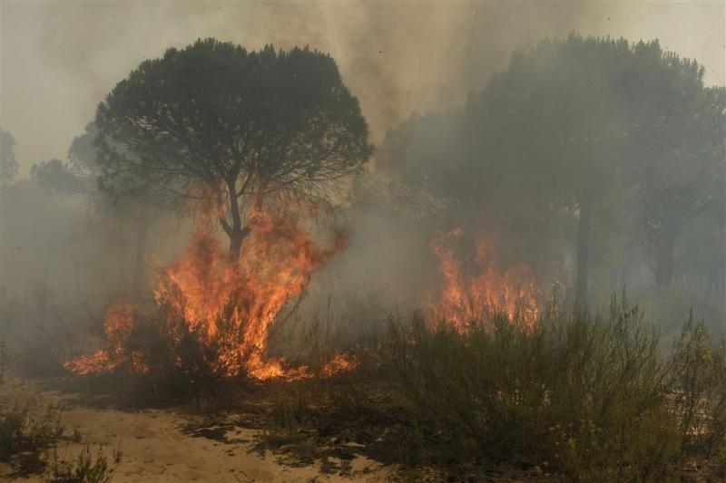 Brand bedreigt Spaans nationaal park Doñana