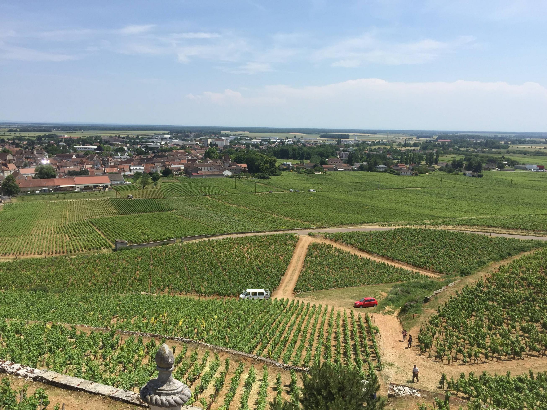 Een goed wijntje kan deze rit mogelijk nog redden (Foto: WikiCommons)