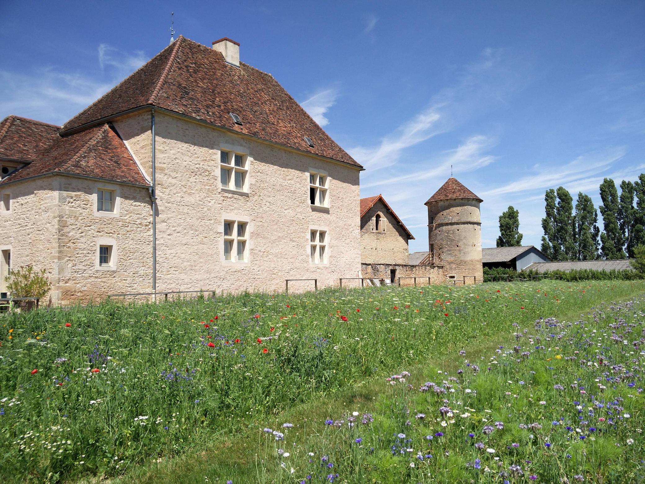 Het chateau van Moux (Foto: Imgur)