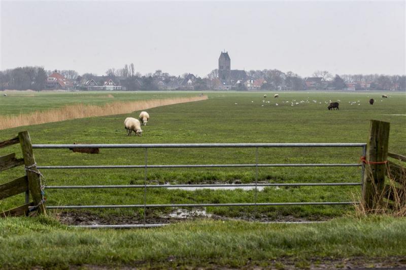 Dode aangetroffen in Friese wei