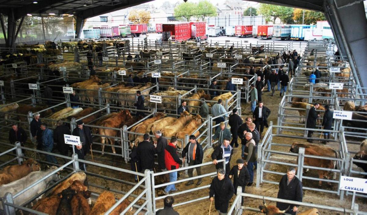De veemarkt in Laissac (Foto: Panoramio)