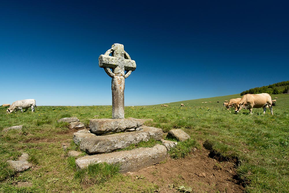 Het kruis waar de runderen vaak naar kijken (Foto: Panoramio)