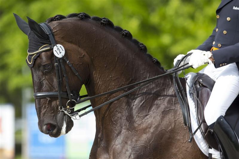Veroordeelde witwasser van paard gehaald