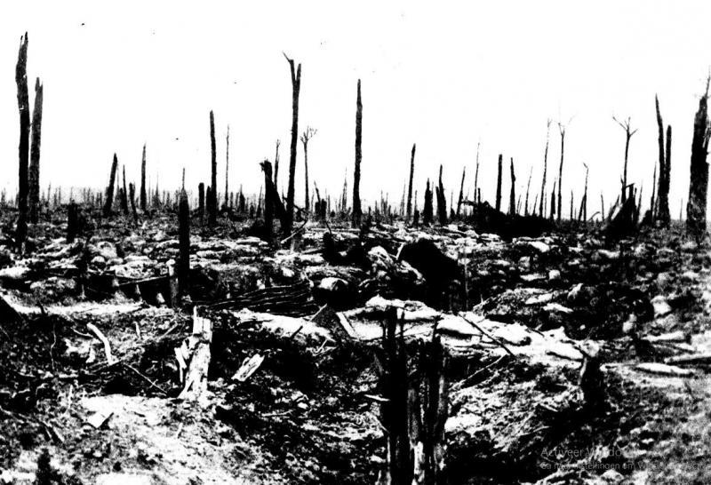 Aanzicht op het slagveld in 1917