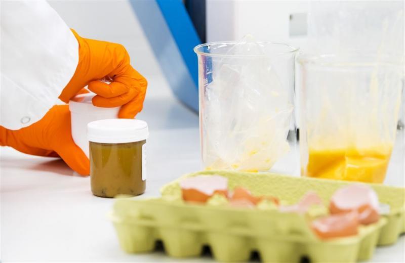 Besmette eieren ook naar Zweden