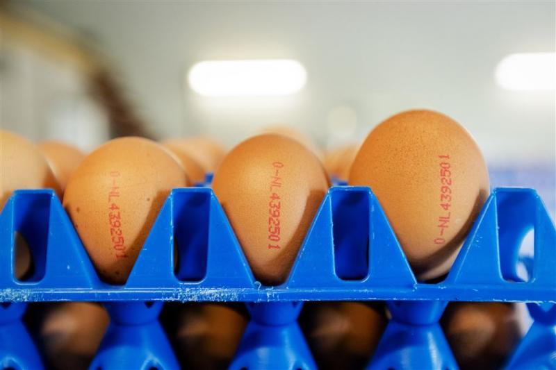 'ChickFriend kocht fipronil onder schuilnaam'