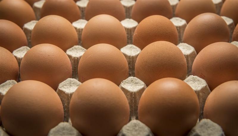 Branche ziet geen reden voor terugroepen eten