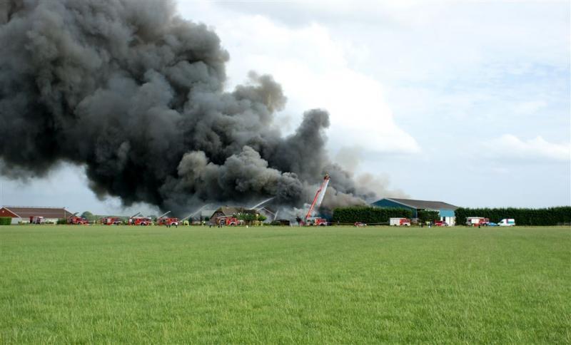 Wakker Dier wil snel actie tegen stalbranden
