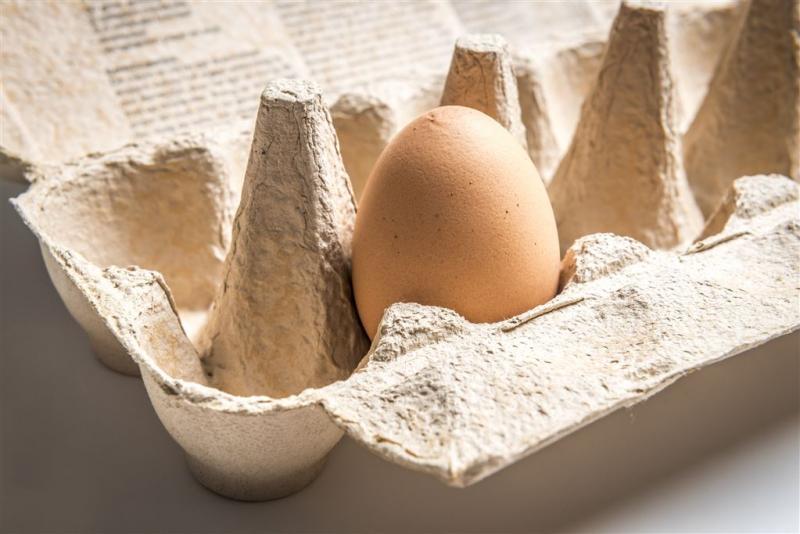 Huiszoekingen in Nederland om eieren