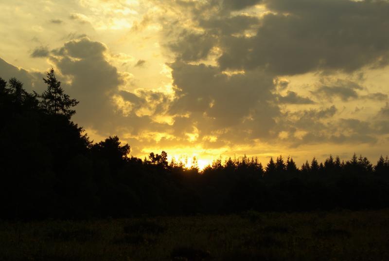 Fraaie zonsopkomst (Foto: Disbatch)
