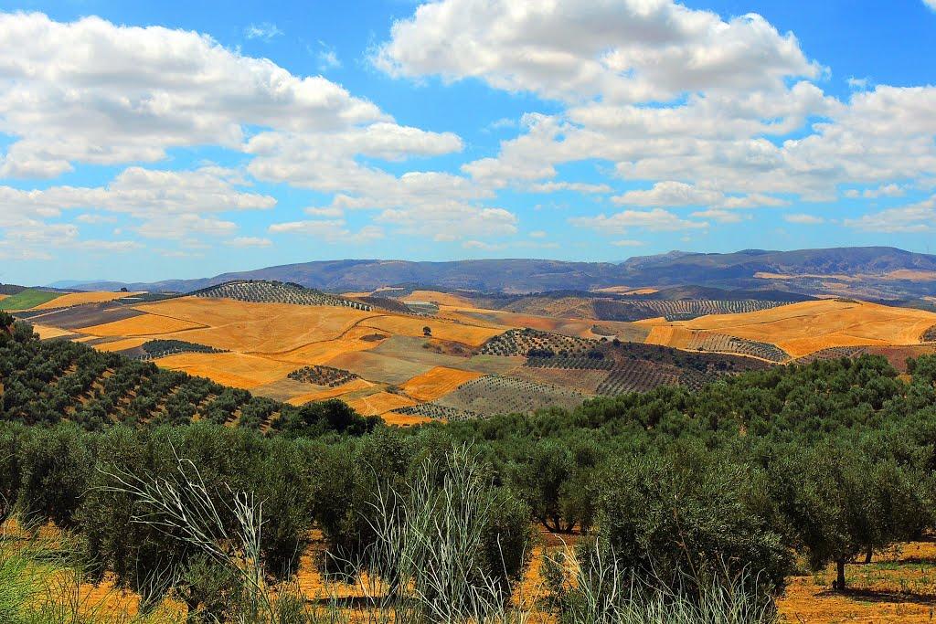 We rijden door het grote niets (Foto: Panoramio)