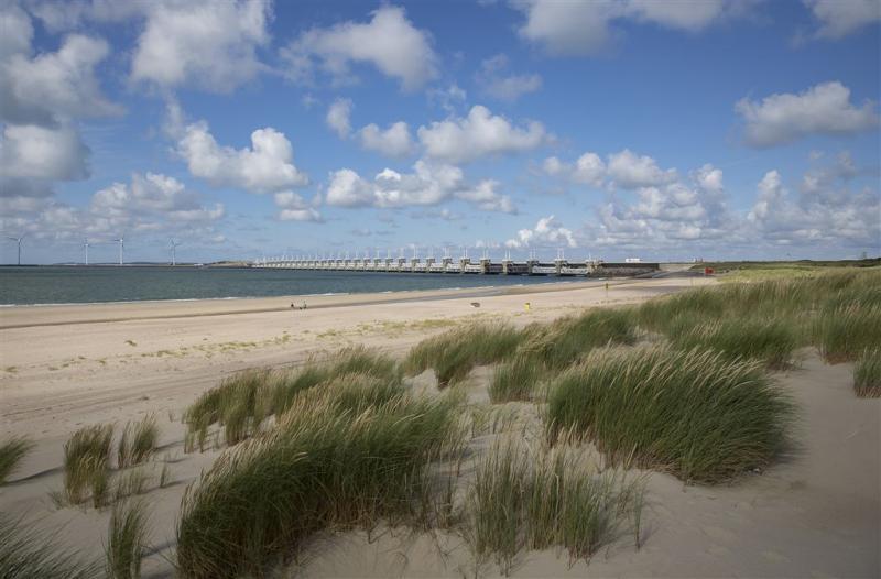 Zeldzame zeeanemoon voor Nederlandse kust