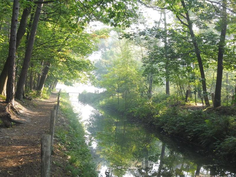 Zondagmorgen, tijdens een wandeling in de buurt van Gemert (Foto: qltel)