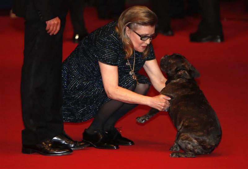 Hond van Carrie Fisher kijkt Star Warstrailer