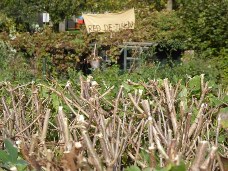 Gemeente Sittard heeft schijt aan de wet (Foto: Anique / Red de Tuinen)