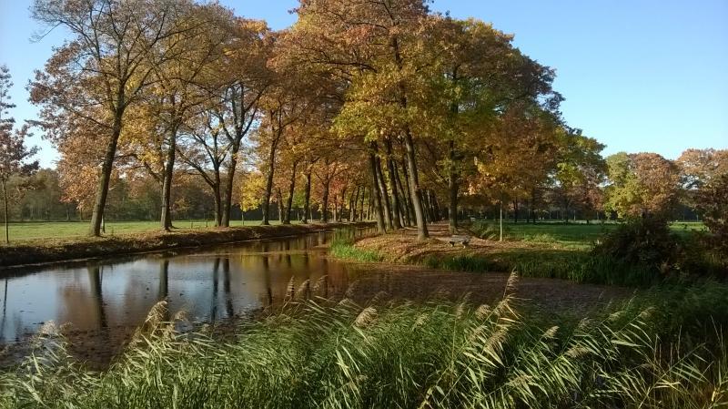 Zondag tijdens een wandeling in oost-Brabant maakte ik deze foto. (Foto: qltel)