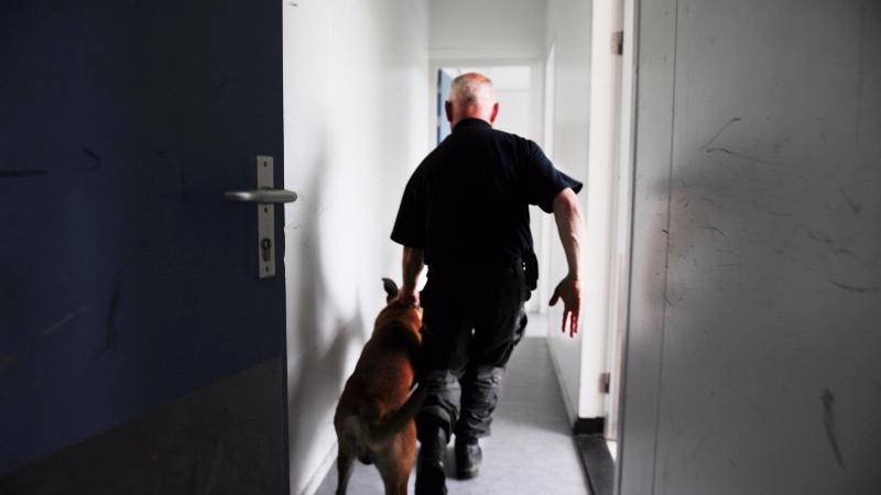 Politiehond vist inbreker onder bed vandaan (Foto: stockfoto politie.nl)