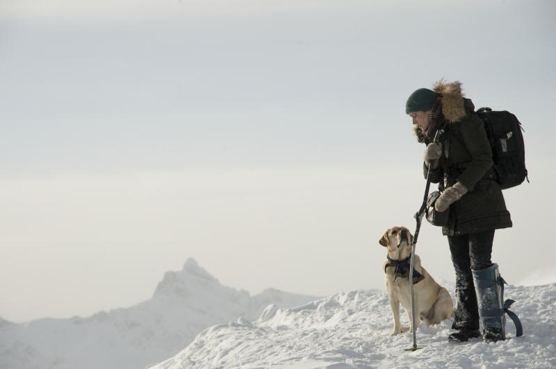 The Mountain between us_labrador