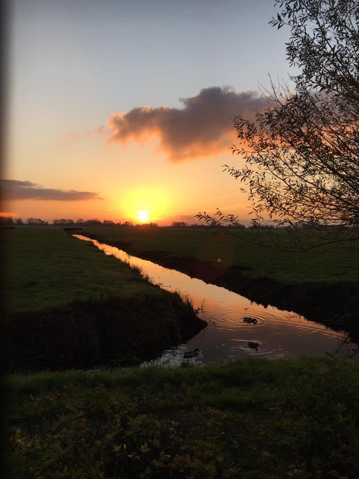 Zonsopkomst in de polder (Foto: Sharon Massa)