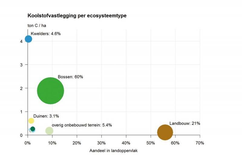 Bos produceert meer CO2 dan het opneemt (Foto: Centraal Bureau voor de Statistiek)