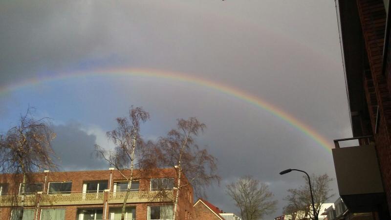 Regenboog in Haarlem (Foto: Raymond Dobber)