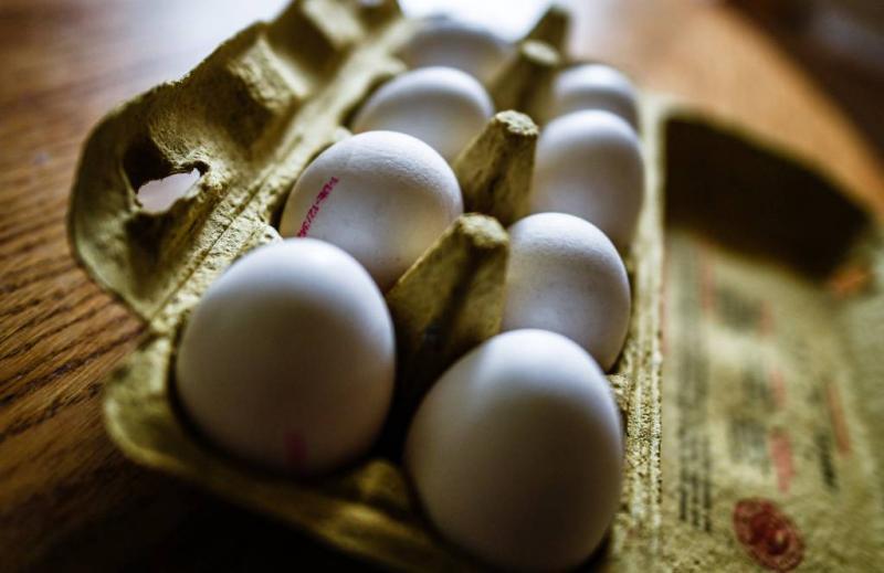 Nog steeds fipronil in eieren