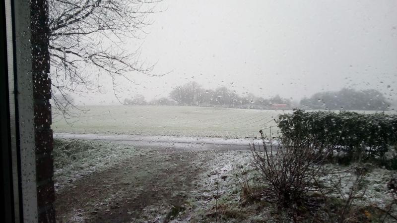 Sneeuw bij qltel (Foto: qltel)
