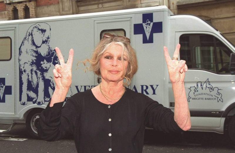 Brigitte Bardot: klagende actrices hypocriet